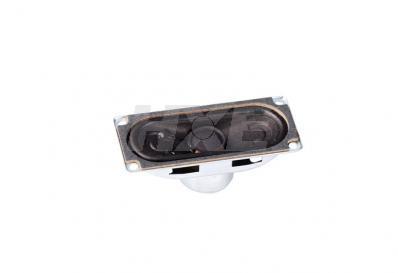 大扬声器 YGDA3070A-8